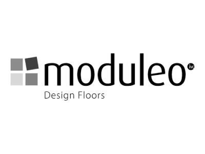 Logo-Moduleowhite.png